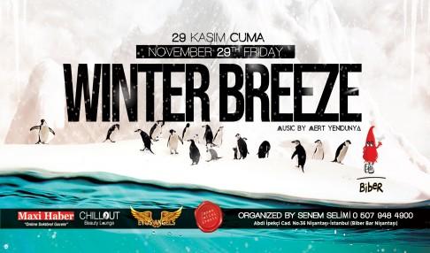 Winter Breeze Party 29 Kasım Cuma Biber Bar Nişantaşı